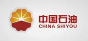 zhong国石油总公司石油勘tan研究院